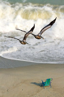 Pelican Pair with Surf and Beach Chair