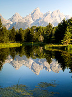 Cathedral Group Reflection, Grand Teton NP, Wyoming